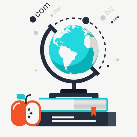 Domain Name Registration Services